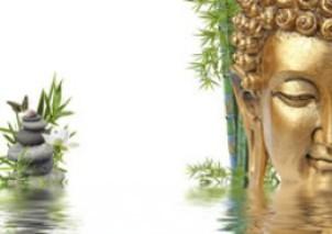 BIEN-ÊTRE & LIEUX DE VIE - Expertises Feng shui